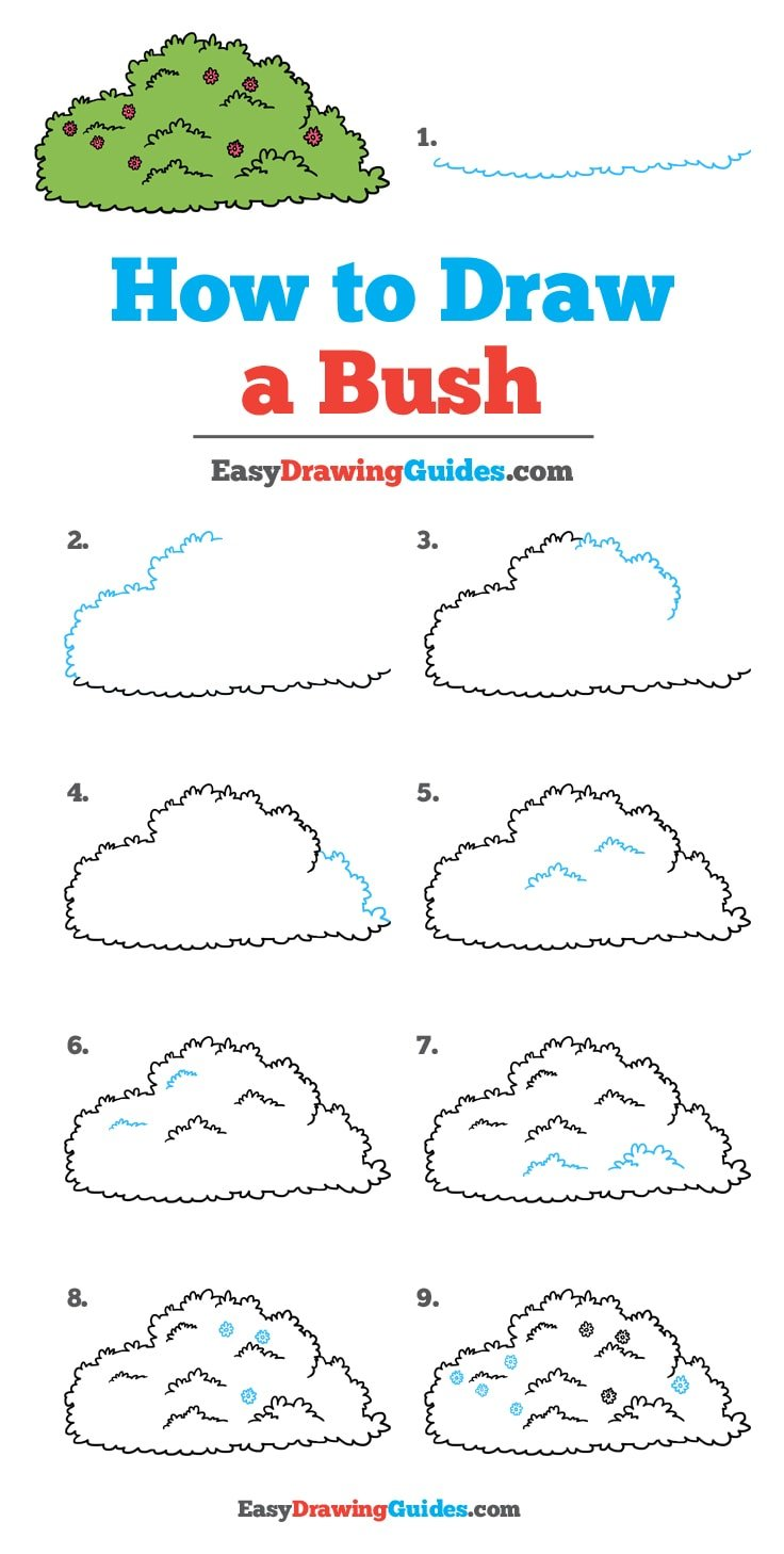 How to Draw Bush