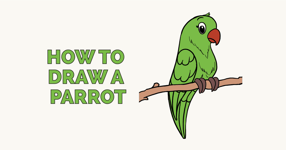 How to Draw a Parrot: Featured Image