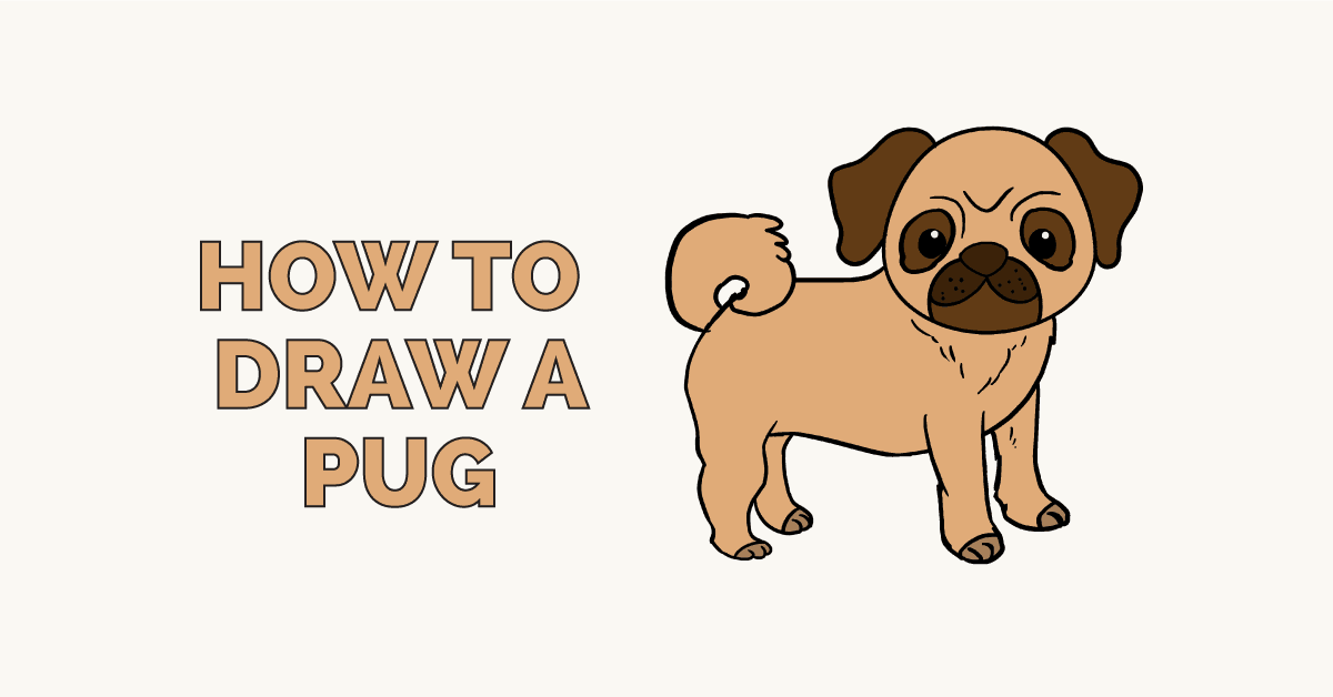 How to Draw a Pug: Featured Image