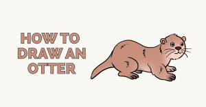 How to Draw an Otter: Featured Image