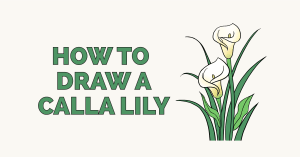 How to Draw a Calla Lily: Featured Image