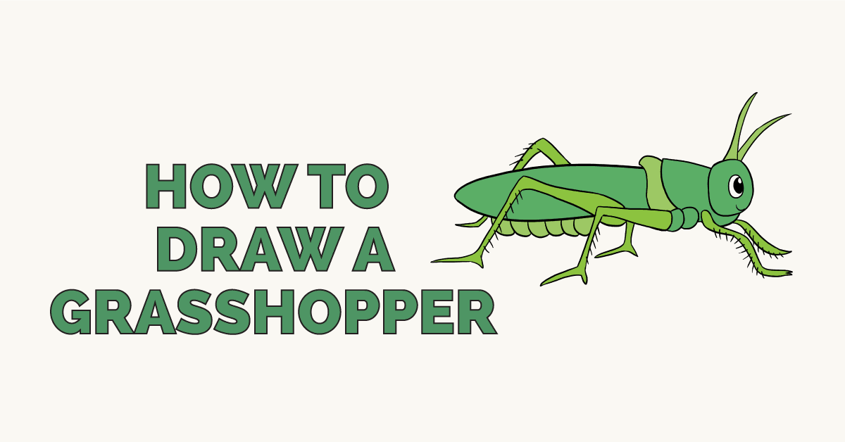 How to Draw a Grasshopper: Featured Image