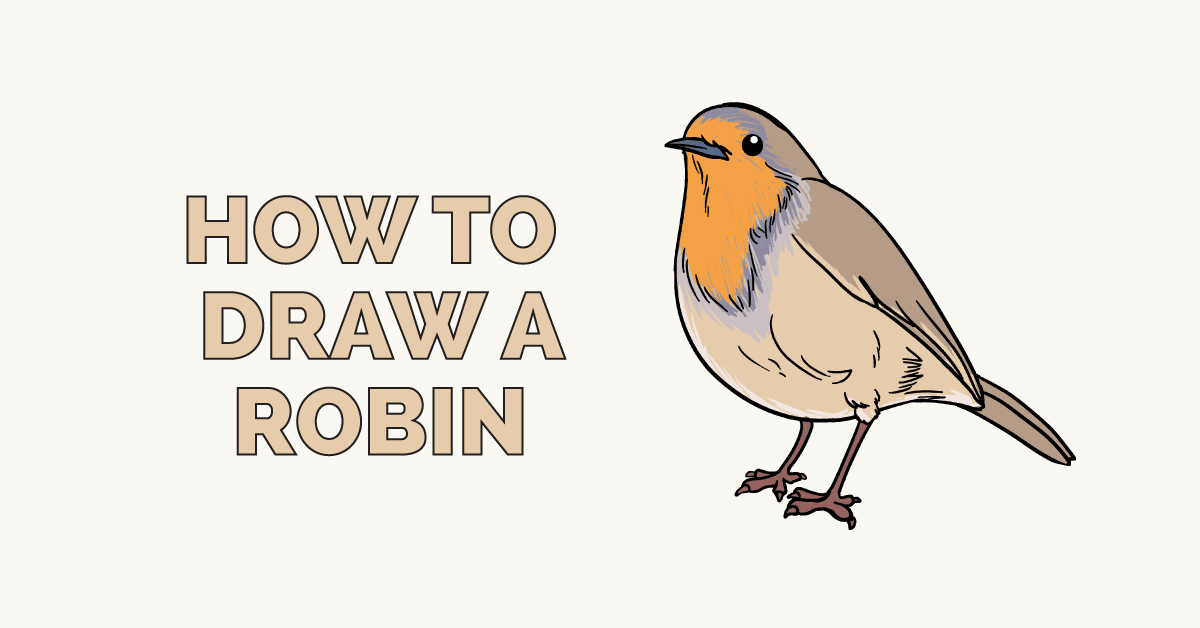 How to Draw a Robin: Featured Image