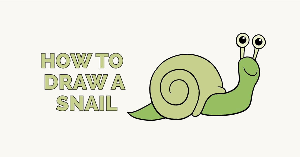 How to Draw a Snail: Featured Image