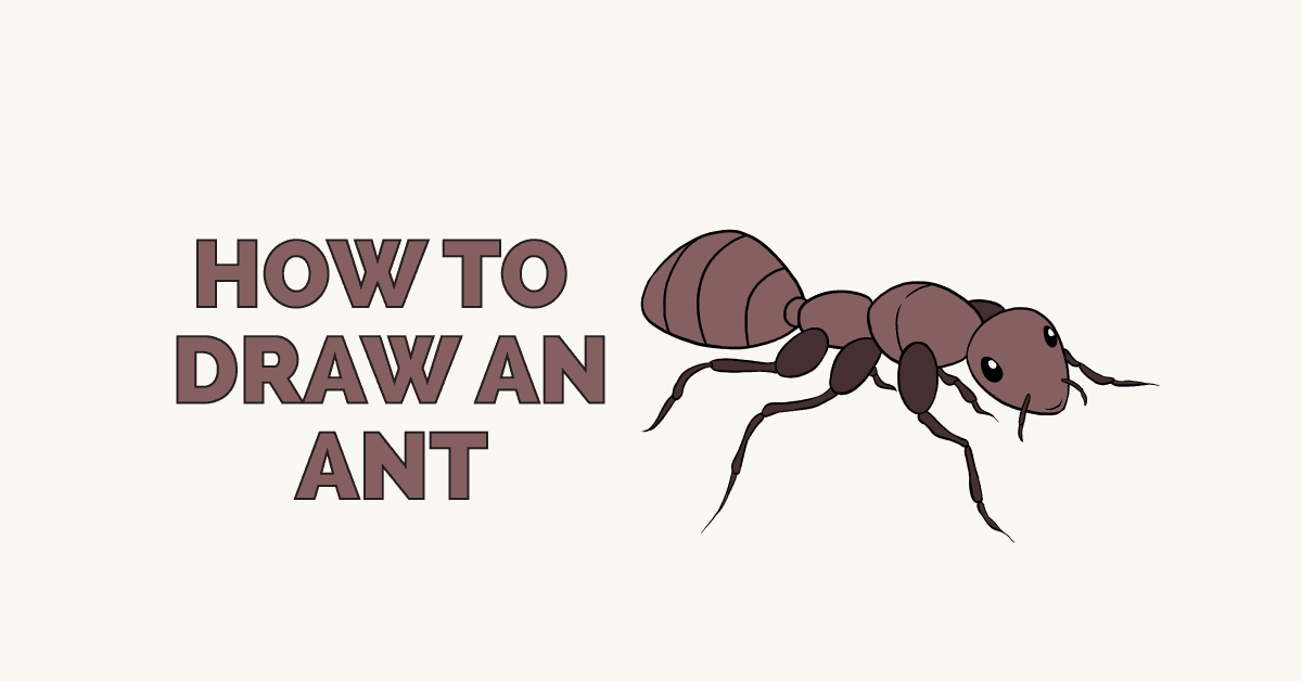 How to Draw an Ant: Featured Image