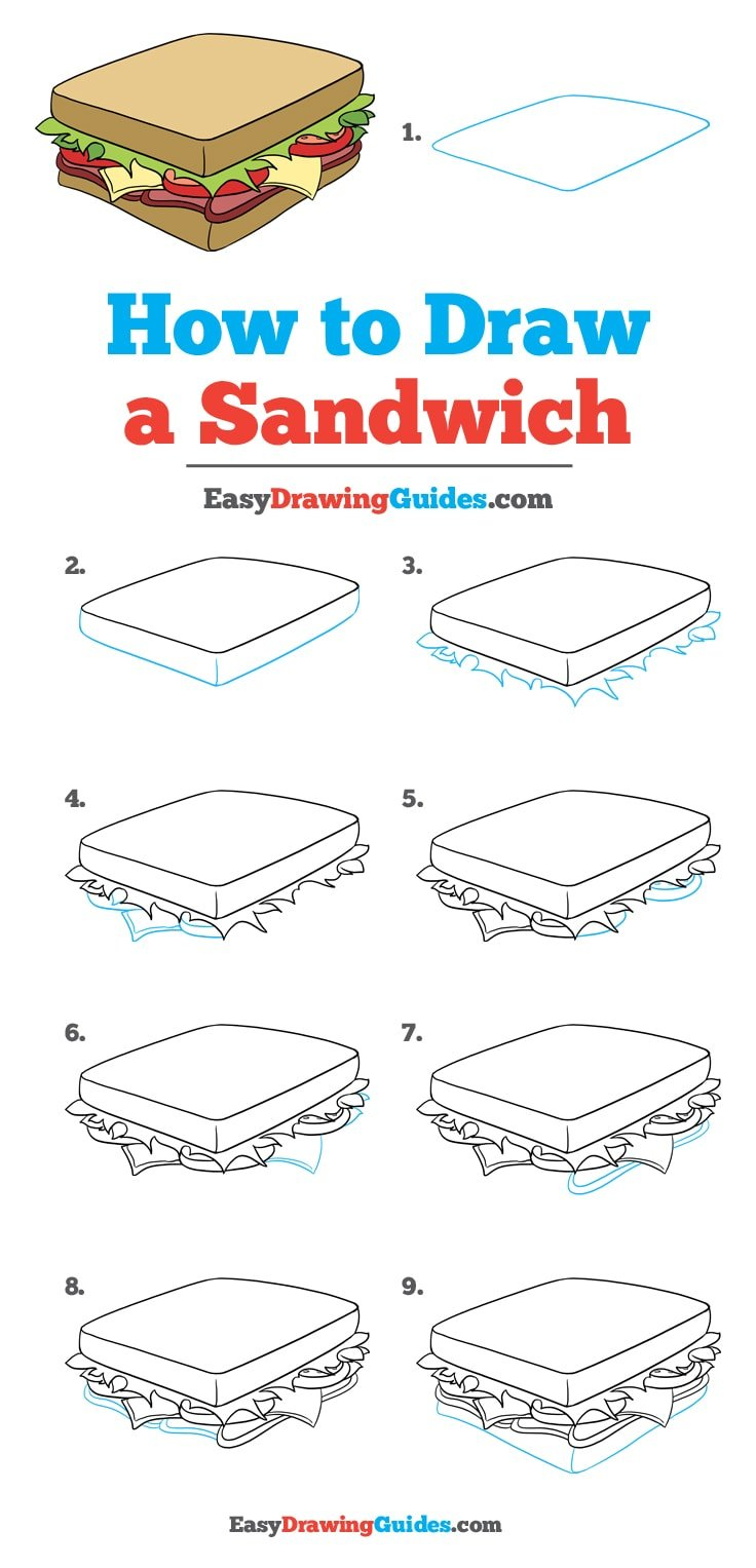 How to draw a sandwich: Step by step drawing tutorial