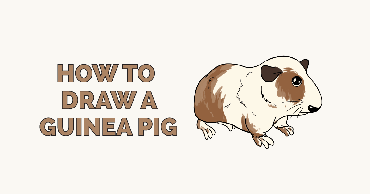 How to Draw a Guinea Pig: Featured Image