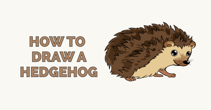How to draw a Hedgehog - featured image