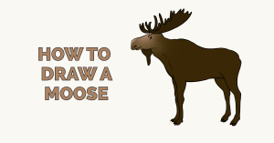 How to Draw a Moose: Featured Image