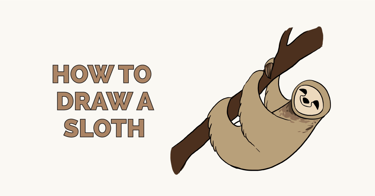 How to Draw a Sloth: Featured Image