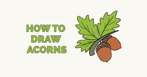 How to Draw Acorns: Featured Image