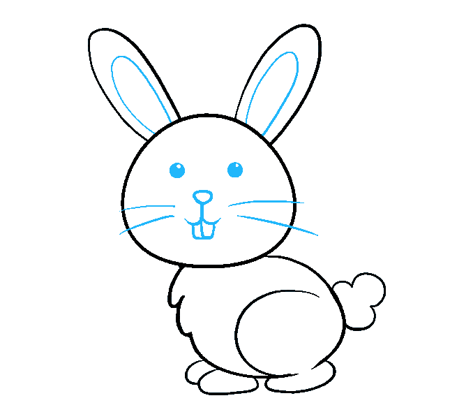 How to draw a bunny rabbit step 9