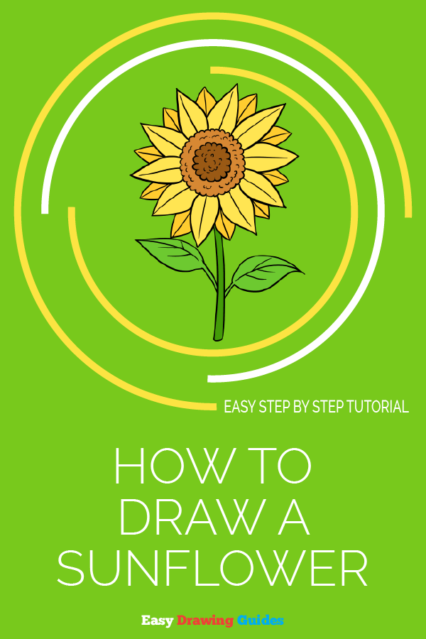 How to Draw Sunflower | Share to Pinterest