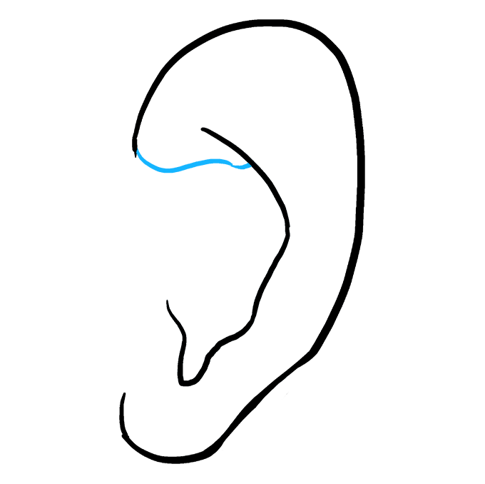 How to Draw Ear: Step 5