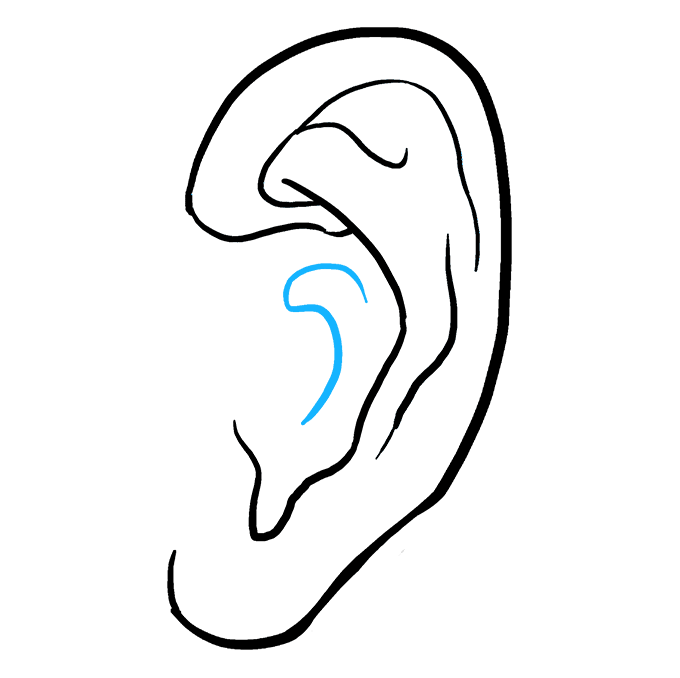 How to Draw Ear: Step 9