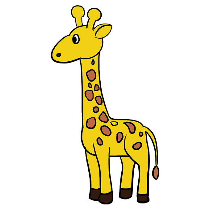 How to Draw Giraffe Step 10