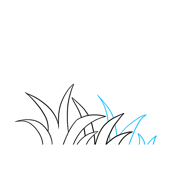 How to Draw Grass: Step 5