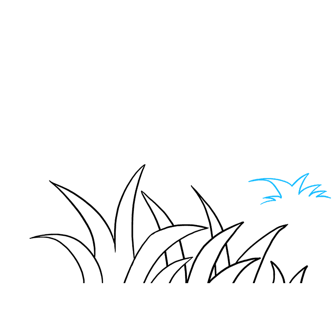 How to Draw Grass: Step 6