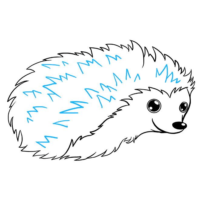 How to Draw Hedgehog: Step 6