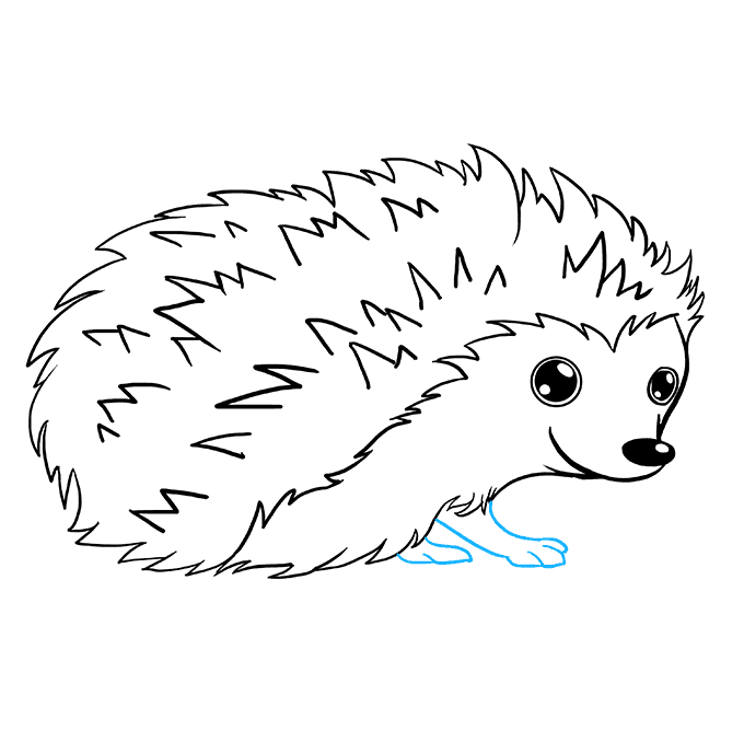 How to Draw Hedgehog: Step 7