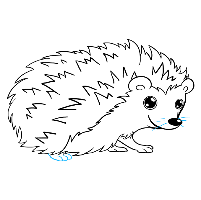 How to Draw Hedgehog: Step 9
