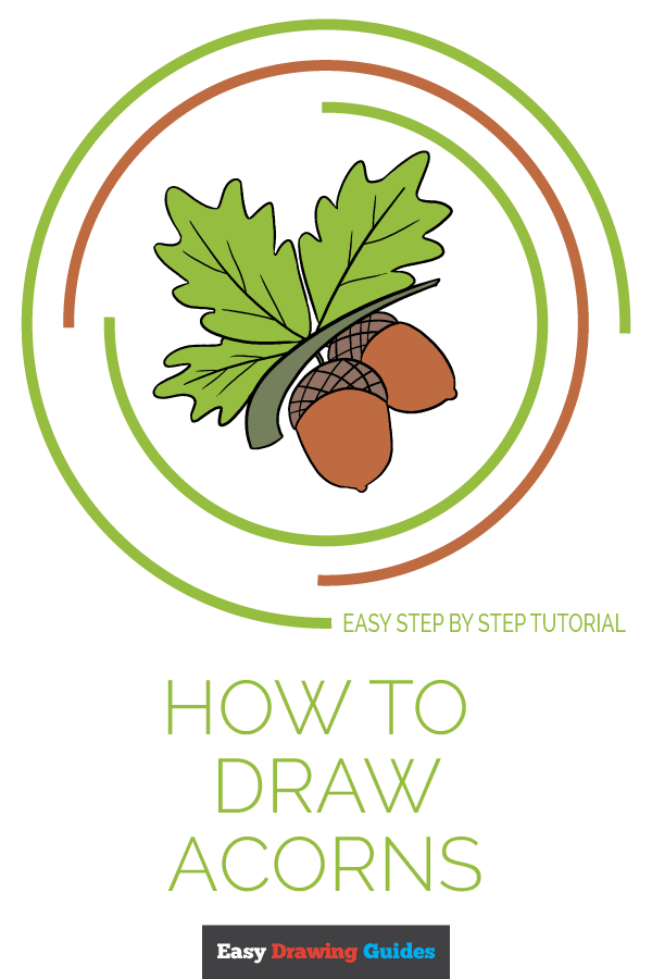 How to Draw Acorns | Share to Pinterest