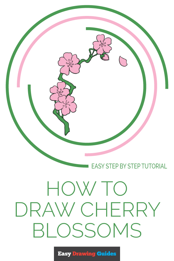 How to Draw Cherry Blossoms | Share to Pinterest