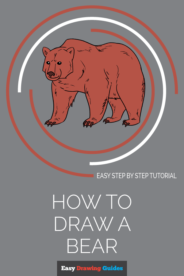 How to Draw Bear | Share to Pinterest