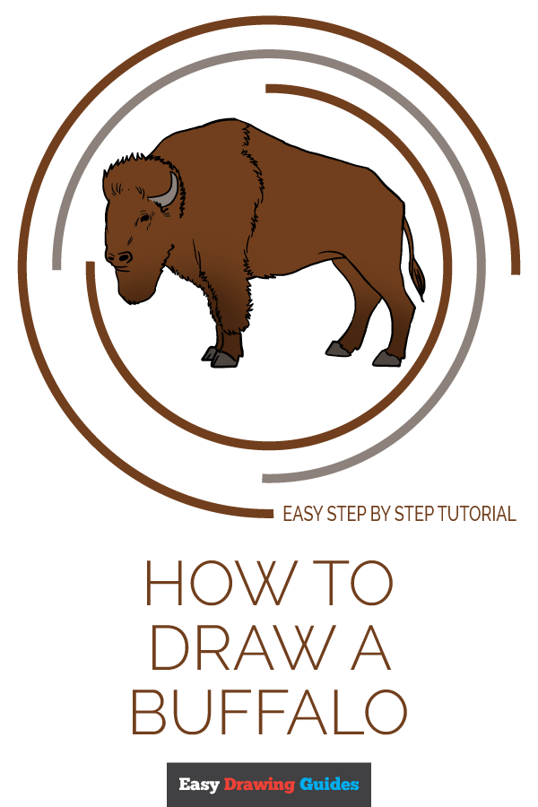 How to Draw Buffalo | Share to Pinterest