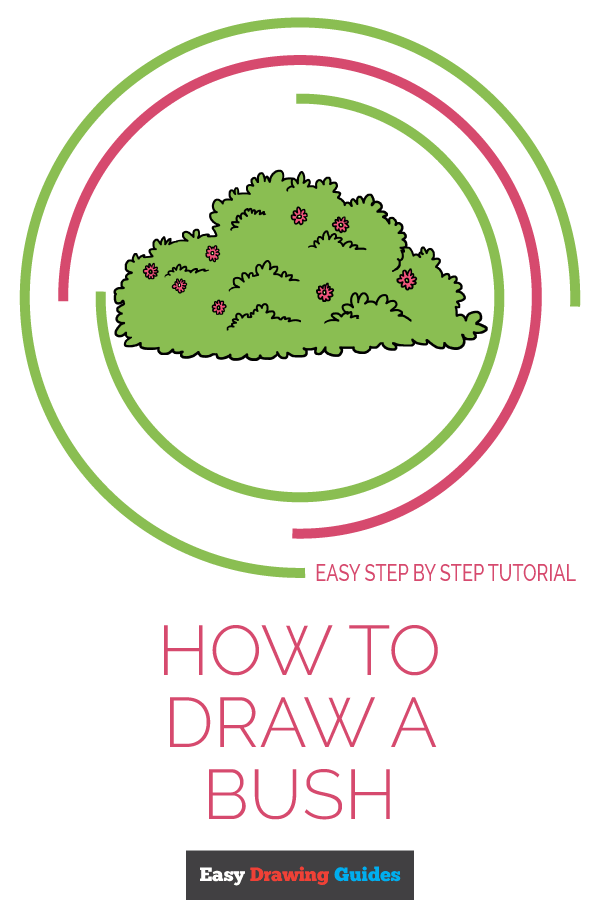 How to Draw Bush | Share to Pinterest
