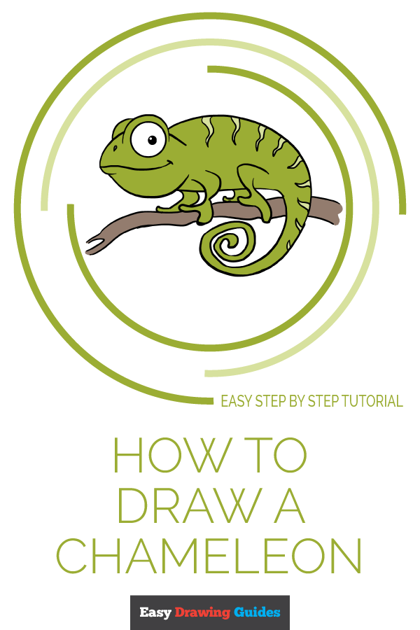 How to Draw Chameleon | Share to Pinterest