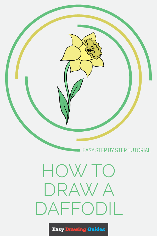 How to Draw Daffodil | Share to Pinterest