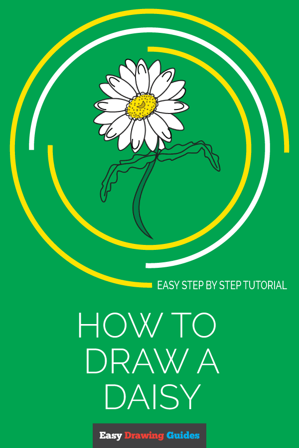 How to Draw Daisy Flower | Share to Pinterest