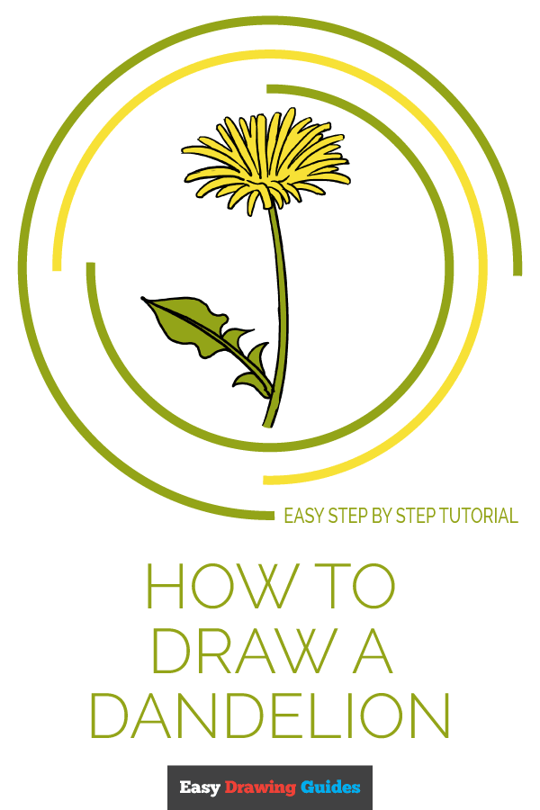 How to Draw Dandelion | Share to Pinterest