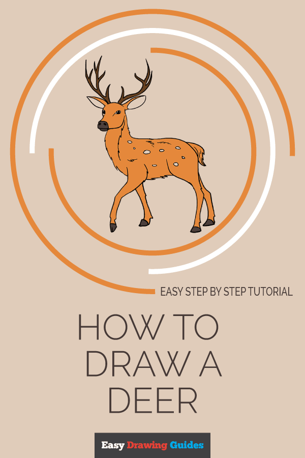 How to Draw Deer | Share to Pinterest