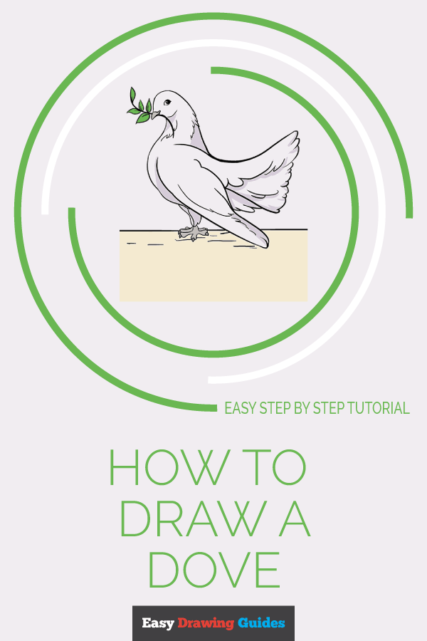 How to Draw Dove | Share to Pinterest