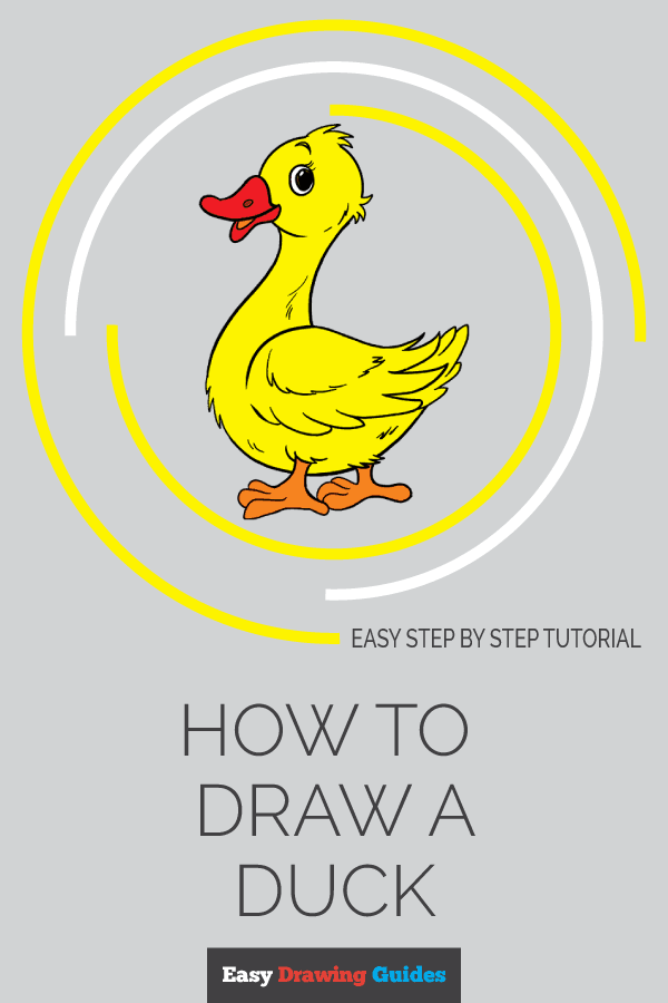 How to Draw a Duck in a Few Easy Steps | Easy Drawing Guides