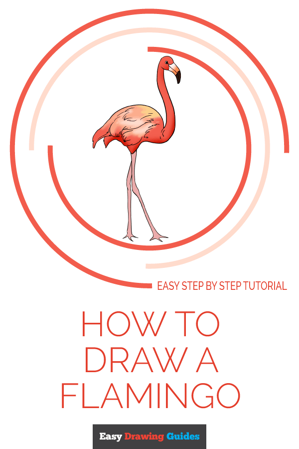 How to Draw Flamingo | Share to Pinterest