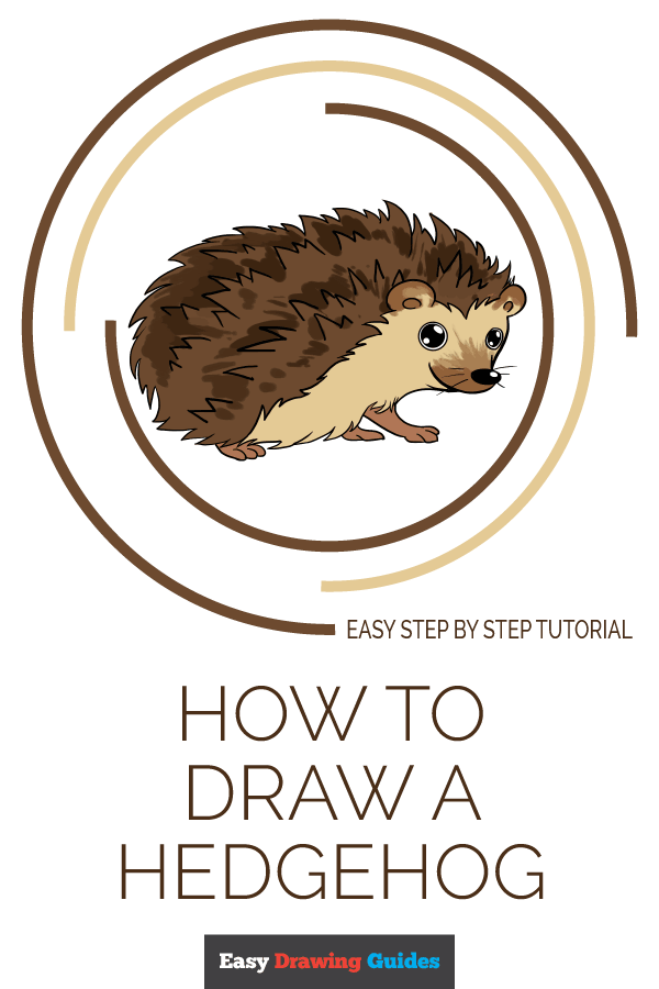How to Draw a Hedgehog | Share to Pinterest