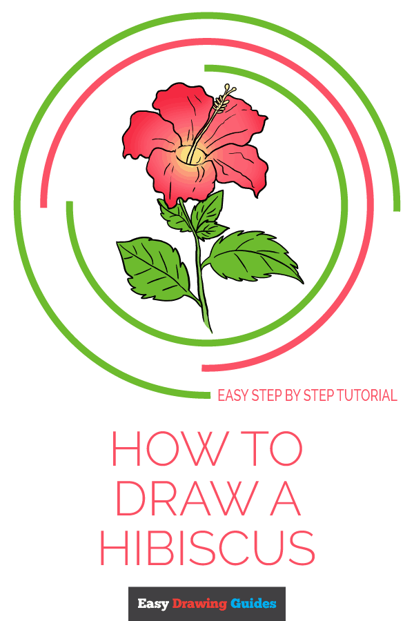 How to Draw a Hibiscus | Share to Pinterest