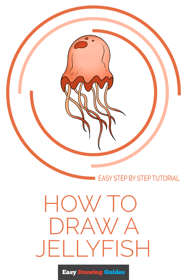 How to Draw Jellyfish | Share to Pinterest