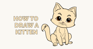 How to draw a Kitten: Featured Image