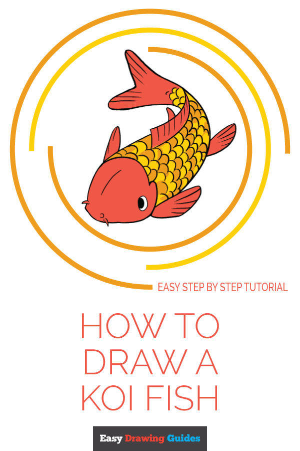 How to Draw a Koi Fish | Share to Pinterest