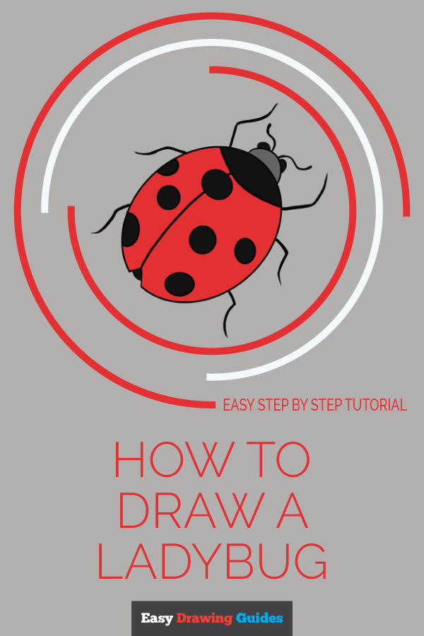 How to Draw a Ladybug | Share to Pinterest