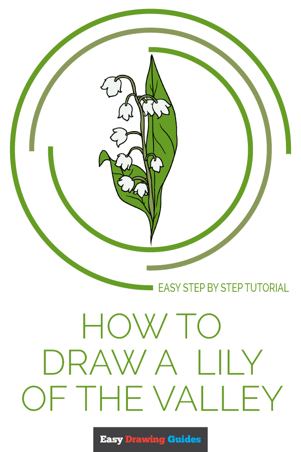 How to Draw Lily of the Valley | Share to Pinterest
