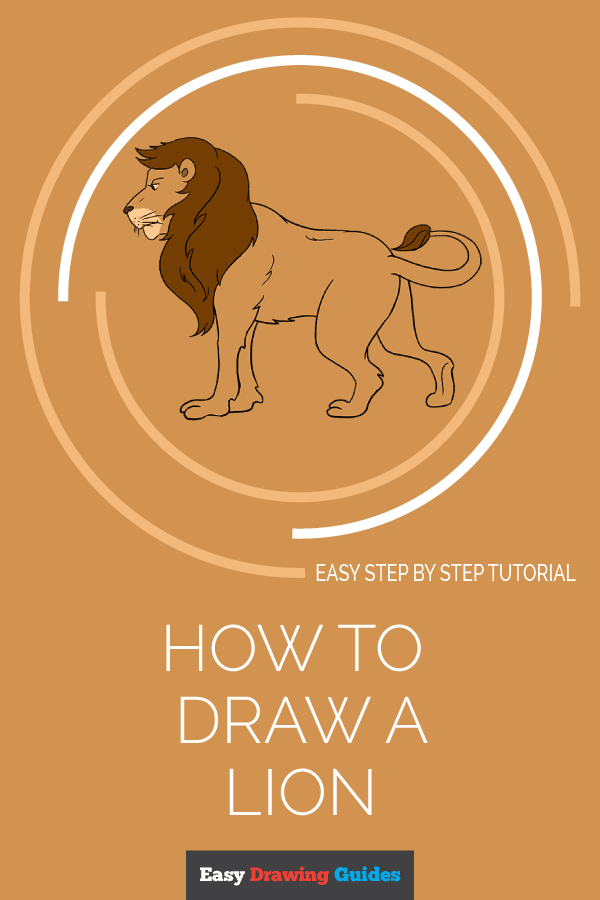 How to Draw Lion | Share to Pinterest