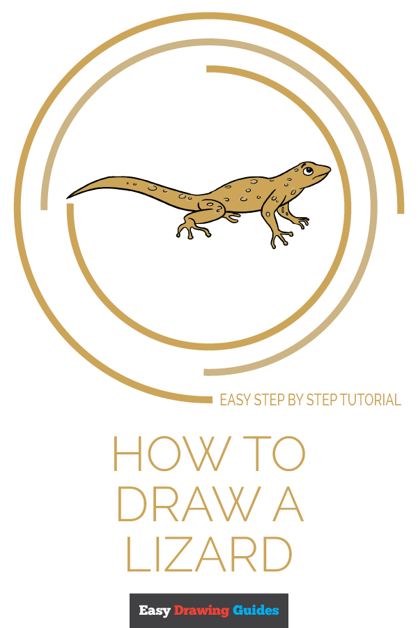 How to Draw Lizard | Share to Pinterest