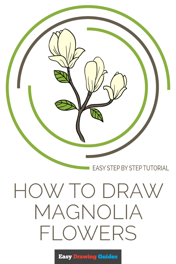 How to Draw a Magnolia Flower | Share to Pinterest