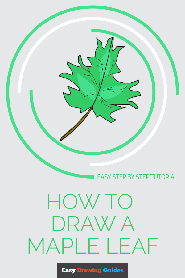 How to Draw Maple Leaf | Share to Pinterest