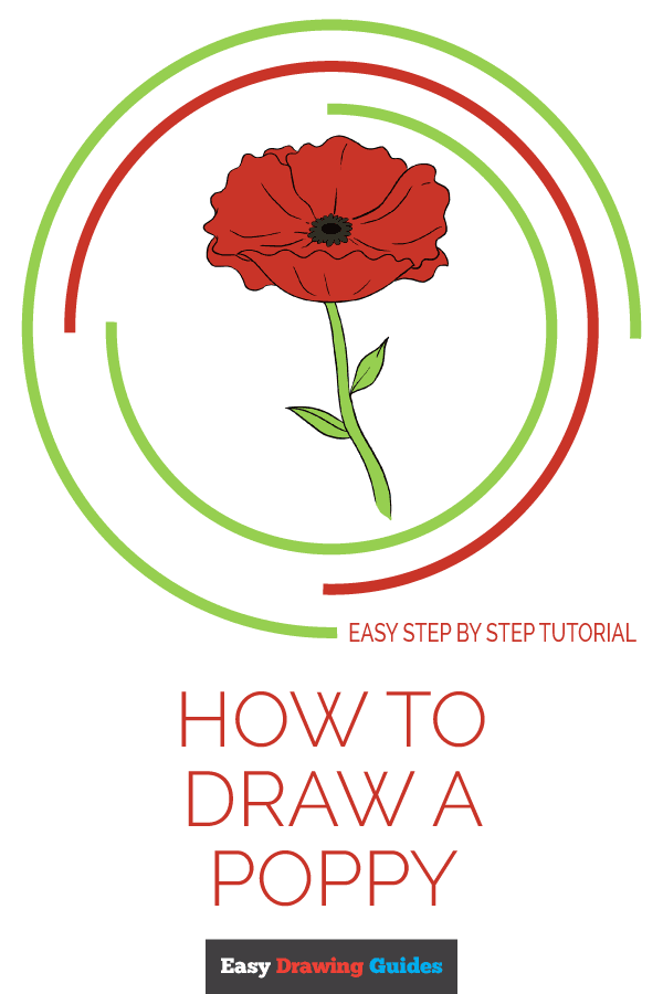 How to Draw Poppy | Share to Pinterest